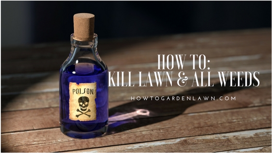 How to kill entire lawn and all weeds - DIY step by step guide