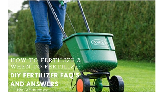 How to fertilize and when to fertilize - DIY fertilizer FAQ's and answers